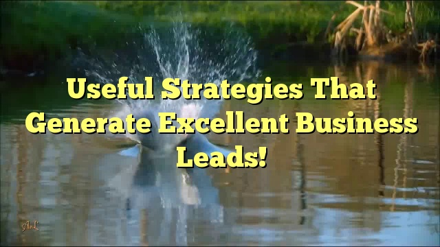Useful Strategies That Generate Excellent Business Leads!