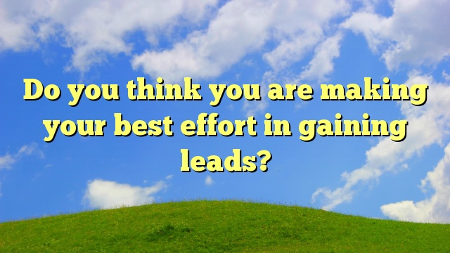 Do you think you are making your best effort in gaining leads?